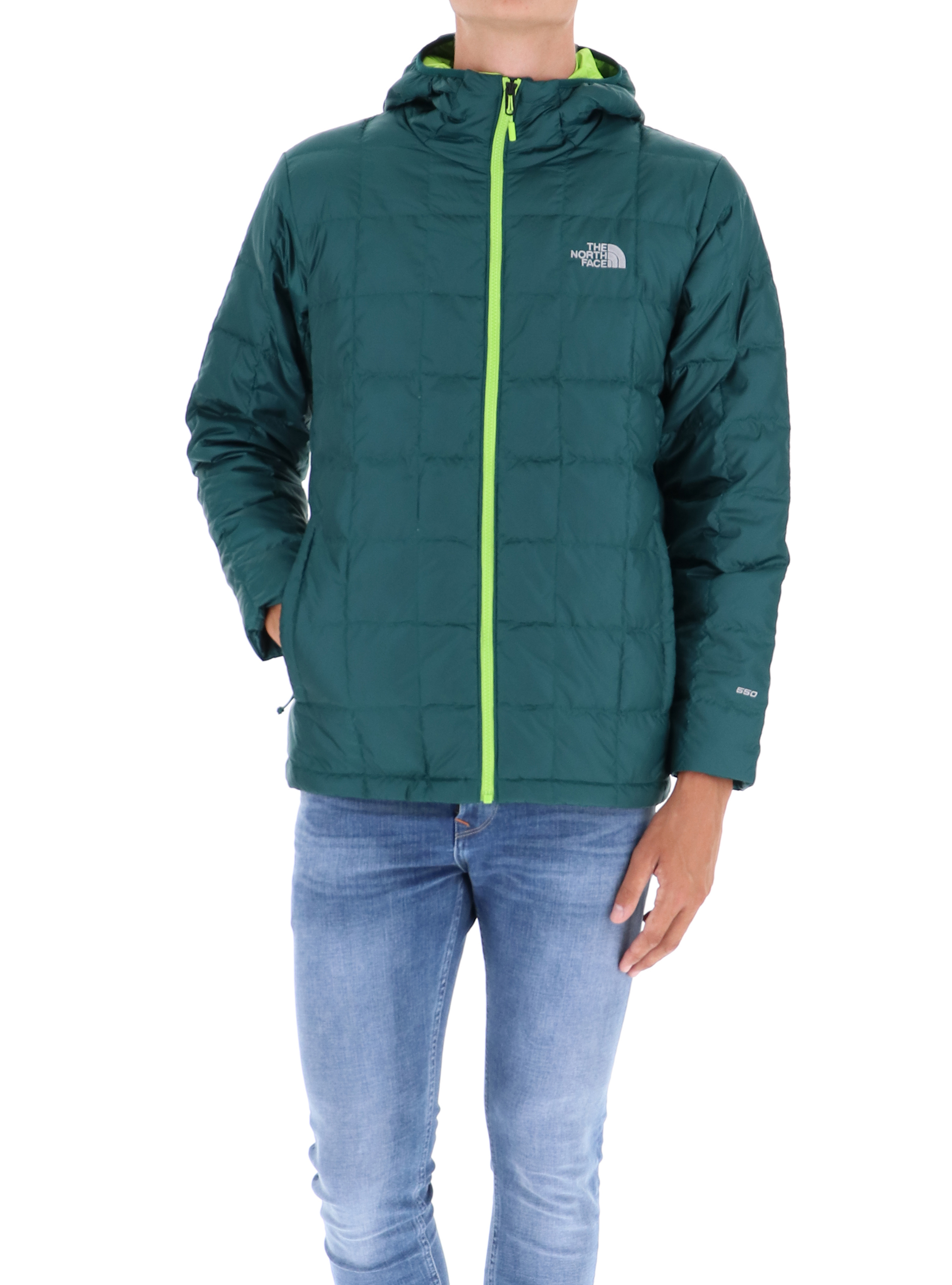 Face The Sport Jkt M Dwn Latini Hd North Kabru Botanical 55prUZqw dd71257cbded
